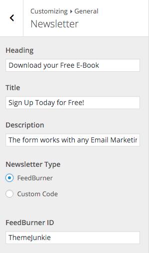 Beginner Customizer Newsletter FeedBurner